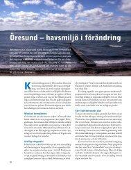 Öresund – havsmiljö i förändring - Havet.nu