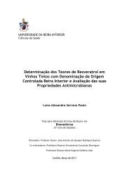 Universidade da Beira Interior - Ubi Thesis