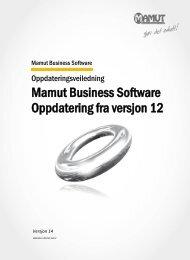 Mamut Business Software Oppdatering fra versjon 12