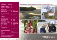 Anglesea Community Profile - Surf Coast Shire