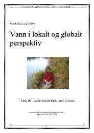 Vann i lokalt og globalt perspektiv