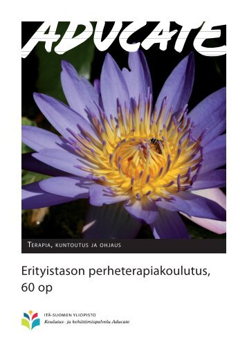 Erityistason perheterapiakoulutus, 60 op - Itä-Suomen yliopisto
