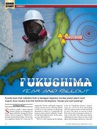 Fukushima_Article_TNA_2014