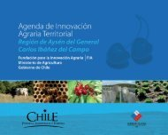 Agenda de Innovación Agraria Territorial de la Región de Aysén - Fia