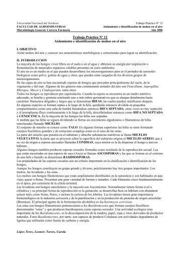 Trabajo Práctico Nº 12 Aislamiento e identificación de mohos en el ...