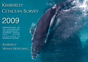 Kimberley cetacean survey 2009 - The Wilderness Society