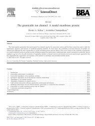 The gramicidin ion channel: A model membrane protein