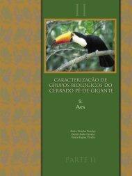 CAP 9 -Aves. In PIVELLO, V. R. & VARANDA, E. M. (orgs.)