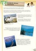 PDF Vorgängerauflage 5 MB - EU-Direct - Page 5
