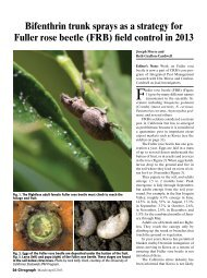 Citrograph article on Fuller Rose Beetle - Citrus Research Board