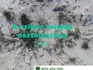 4. Tóth Tibor _ A szikes talajok osztályozása
