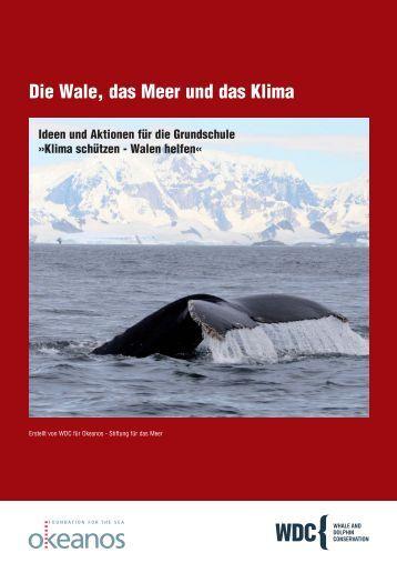 Die Wale, das Meer und das Klima - Whale and Dolphin ...