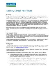 Electricity Storage: Policy Issues - DNV Kema