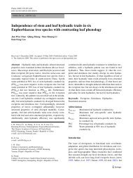 Independence of stem and leaf hydraulic traits in six Euphorbiaceae ...