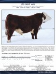 2011 Semen & Embryo Directory - Canadian Hereford Association - Page 7