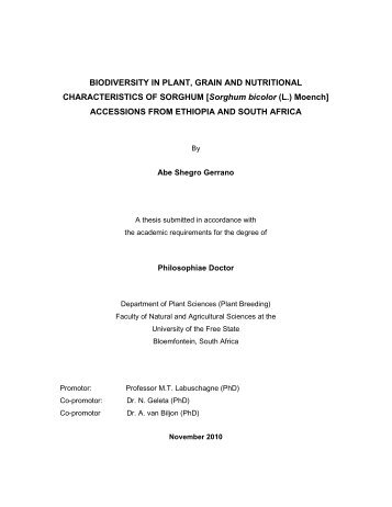 Final Abe PhD Thesis 2011_1 - University of the Free State