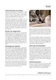 Miljöförvaltningen Katt - Borås