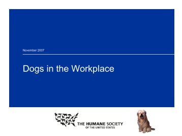 """Dogs in the Workplace"" Staff Orientation"