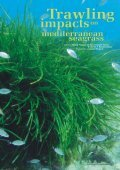 Seagrass-Watch_Mag_Issue47_pp21-52 - Page 7