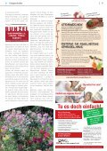 Do it 2011 - RSW Media - Page 5