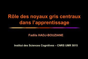 Apprentissage - Institut des Sciences cognitives - CNRS