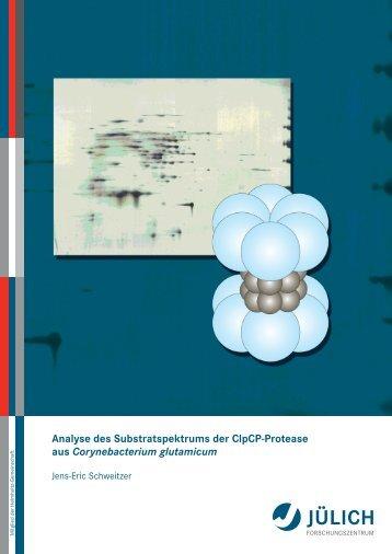 Analyse des Substratspektrums der ClpCP-Protease aus ...