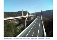 Composite bridge decks, possibly with corrugated steel ... - ACES
