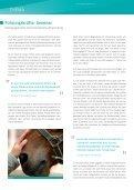 Klages & Partner GmbH - Horseway - Seite 3