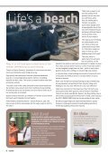 Million Tonnes - Hills Group - Page 6