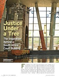Justice Under a Tree - Lawyers