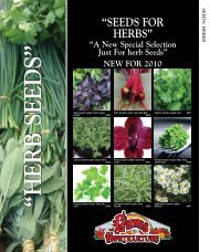 """""""SEEDS FOR HERBS"""""""