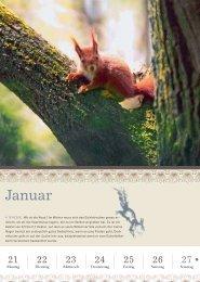 Thorbeckes Landleben Kalender 2013