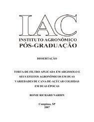 dissertação torta-de-filtro aplicada em argissolo e seus efeitos ... - IAC