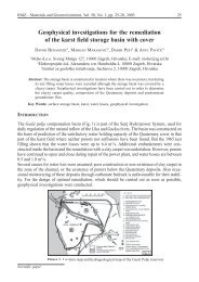 Geophysical investigations for the remediation of the karst ... - RMZ