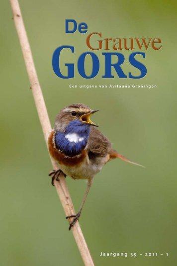 download hier dit nummer van de Grauwe Gors - Avifauna Groningen