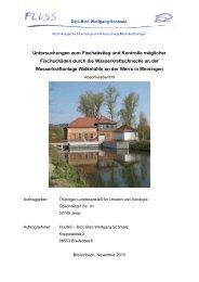 Abschlussbericht - Thüringer Landesanstalt für Umwelt und Geologie
