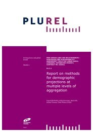 Report on methods for demographic projections at multiple ... - Plurel