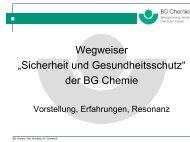 """Wegweiser """"Sicherheit und Gesundheitsschutz"""" der BG Chemie"""