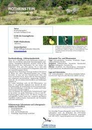zum Steckbrief Rothenstein - NABU-Stiftung Nationales Naturerbe