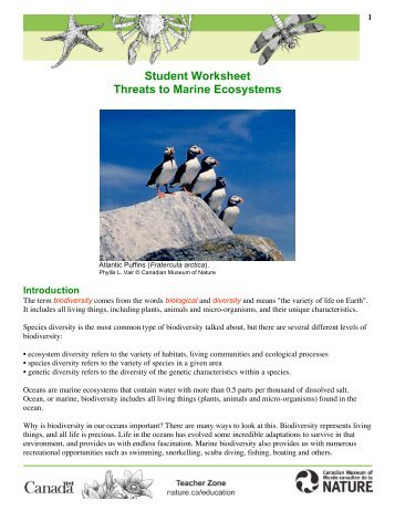 Student Worksheet: Threats to Marine Ecosystems