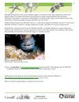 Student Worksheet: Threats to Marine Ecosystems - Page 3