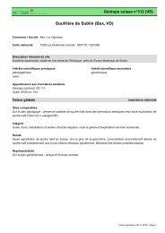 Soufrière de Sublin (Bex, VD) - admin.ch