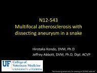 N11-373 Disseminated fungal infection in a dog