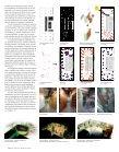 gOEtHE INstItUt tEMPORAl - Ediciones ARQ - Page 4