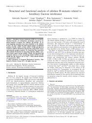 Structural and functional analysis of aldolase B ... - ResearchGate