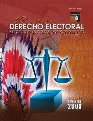 8 - Tribunal Supremo de Elecciones