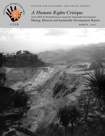 mining report - Center for Economic and Social Rights