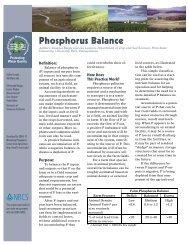 Phosphorus Balance - Sera-17