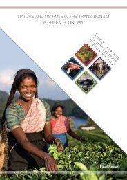 Nature-Green-Economy Full Report - TEEB