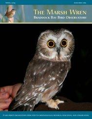 Spring 2009 - Braddock Bay Bird Observatory